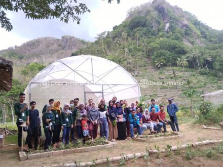 Tingkatkan Ilmu Pertanian Kepada Pemuda/i, Taruna Tani Sriharjo adakan Pelatian Pembibitan